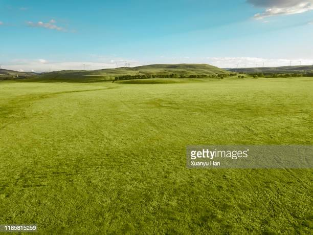 aerial view of green meadow under the clear sky - anhöhe stock-fotos und bilder