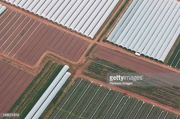 Aerial view of greenhouses in crop fields