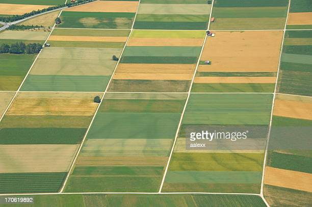 Aerial view of gridded farmlands