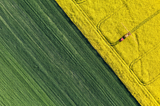aerial view of harvest fields with tractor 494339950