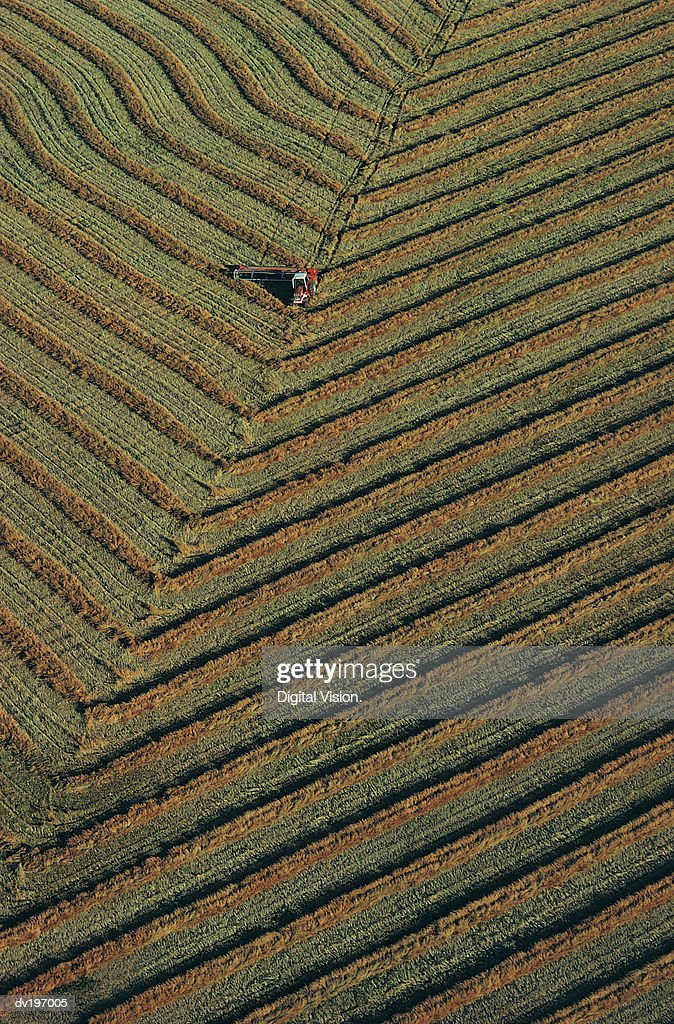 Aerial view of harvester in field : Stock Photo