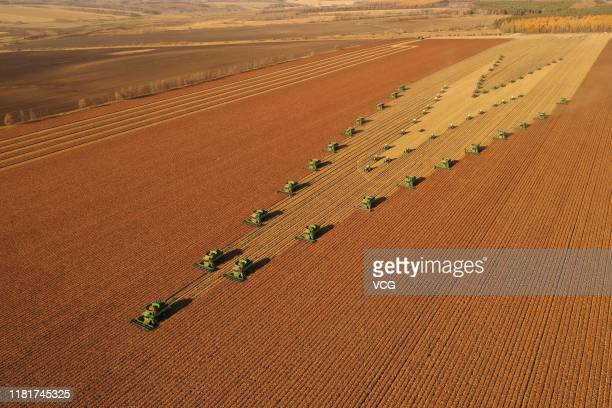 Aerial view of harvesters stubble choppers and soil preparation machines work at a sorghum field of Nen River farm on October 17 2019 in Nenjiang...