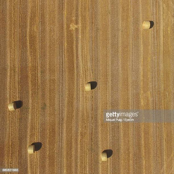 Aerial View Of Hay Bales On Agricultural Field