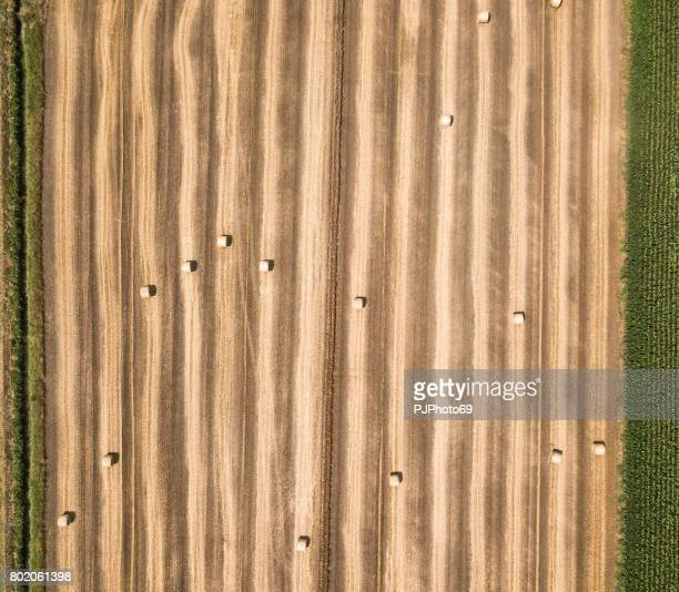 Aerial view of hay bales