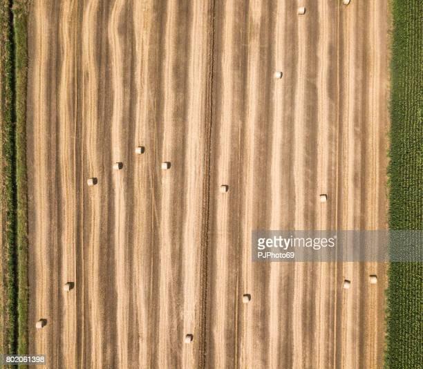 干し草の俵の航空写真 - pjphoto69 ストックフォトと画像