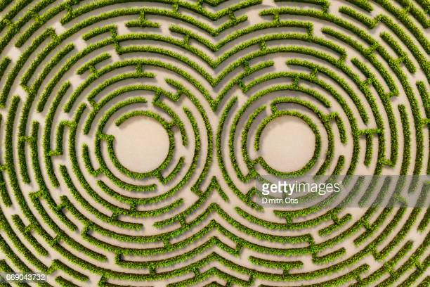Aerial view of hedge maze with two circular central points