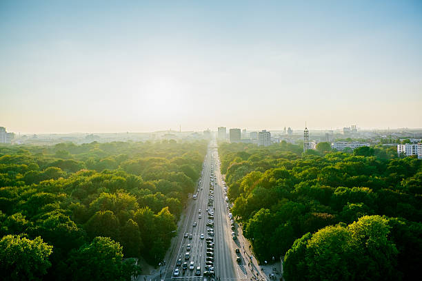 Aerial View Of Highway Amidst Trees Against Clear Sky Wall Art