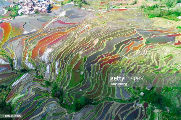 aerial view of historic indigenous village surrounded by rice terraces at yuanyang,yunnan province,china - terraced field stock pictures, royalty-free photos & images