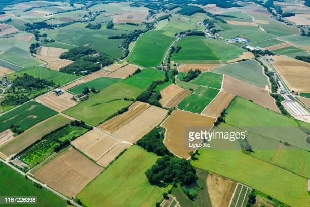 aerial view of hokkaido fields - liyao xie fotografías e imágenes de stock
