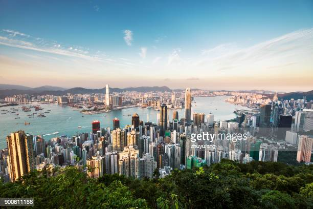 aerial view of hong kong - skyline stock pictures, royalty-free photos & images