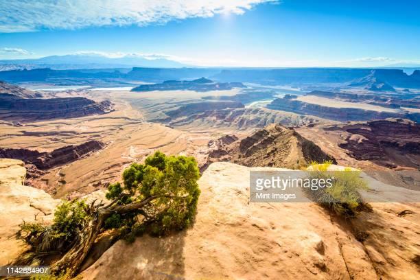 aerial view of horseshoe bend, canyonlands, utah, united states - 岩壁 ストックフォトと画像