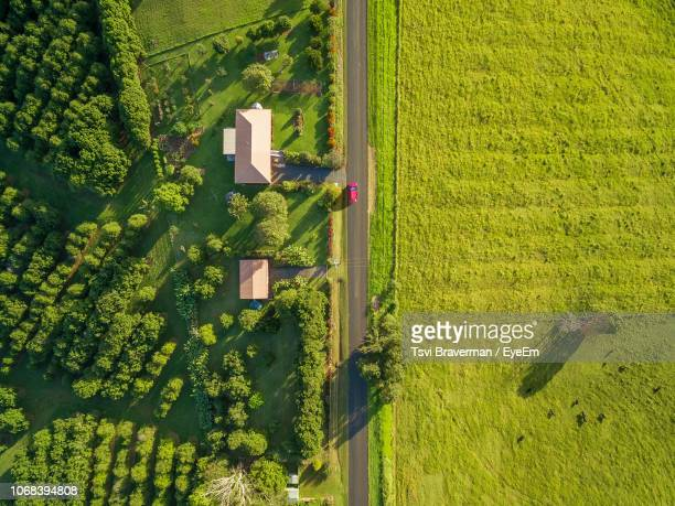 aerial view of houses on agricultural field - scena rurale foto e immagini stock