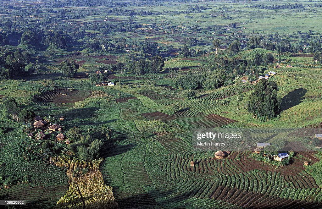 Aerial View Of Intensive Agriculture In Virunga Foothills