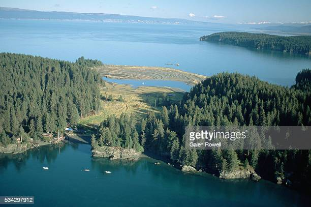 aerial view of kachemak bay wilderness lodge - kachemak bay stock pictures, royalty-free photos & images