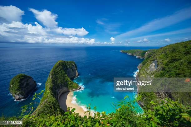 Aerial view of Kelingking Beach aka T-Rex Head Beach in Nusa Penida, Bali, Indonesia