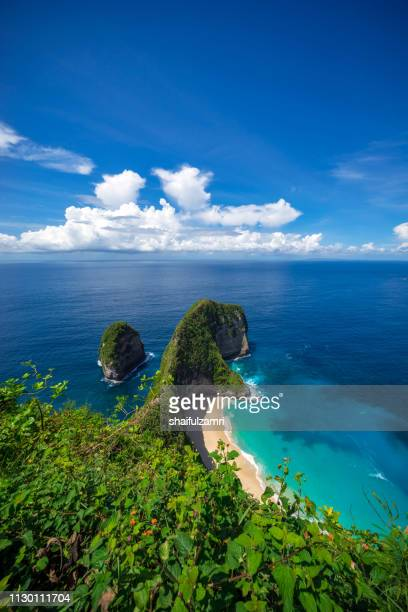 aerial view of kelingking beach at nusa penida island, bali, indonesia. - shaifulzamri stock pictures, royalty-free photos & images