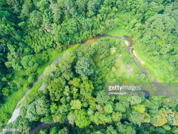 Luftaufnahme von Kra Chong Wasserfall und tropischen Wald