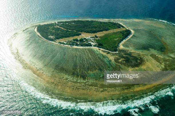 aerial view of lady elliot island during sunny day, queensland, australia - great barrier reef aerial stock pictures, royalty-free photos & images