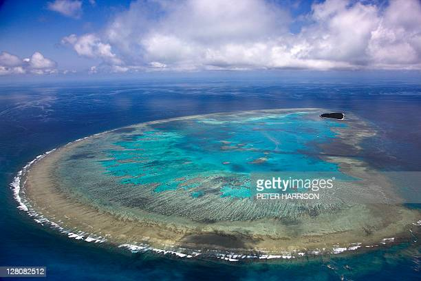 aerial view of lady musgrave island, great barrier reef, queensland, australia - great barrier reef aerial stock pictures, royalty-free photos & images