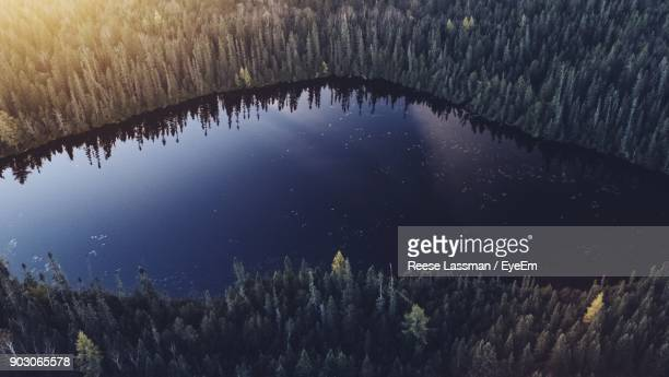 Aerial View Of Lake Amidst Trees At Forest