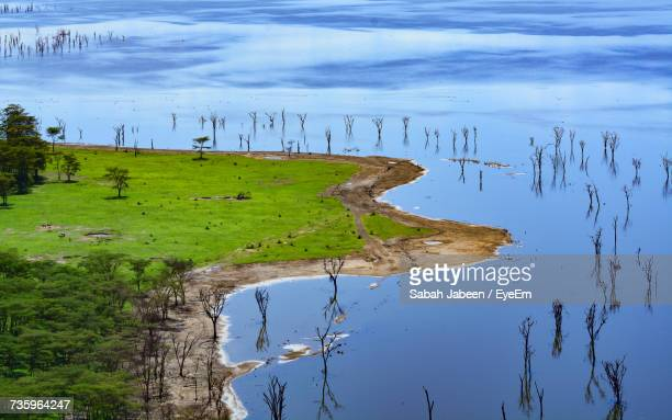 aerial view of lake by field - lake nakuru stock photos and pictures
