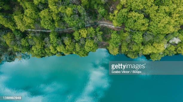 aerial view of lake by trees,hungary - hungary stock pictures, royalty-free photos & images