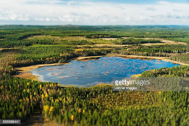 aerial view of lake surrounded by forest - östersund stock-fotos und bilder