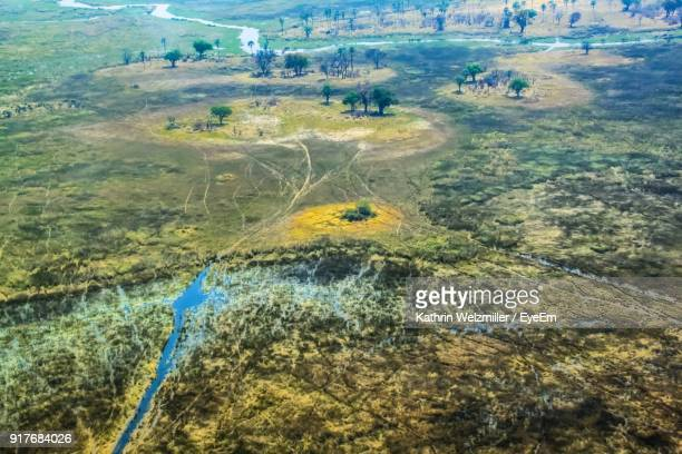 aerial view of landscape - okavango delta stock pictures, royalty-free photos & images