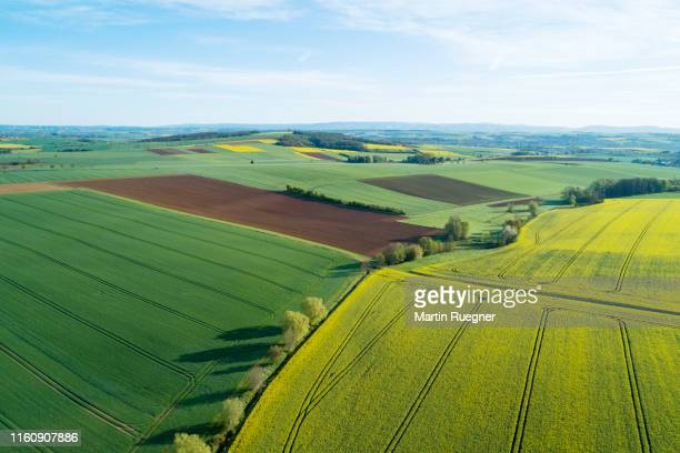 aerial view of landscape with agricultural fields (yellow rape field) and trees, springtime. franconia, bavaria, germany. - feld stock-fotos und bilder
