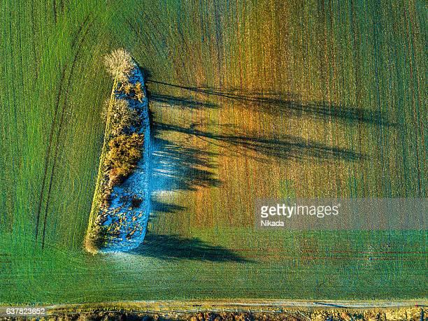 冬の木々や畑のある風景の空中写真 - 休耕田 ストックフォトと画像