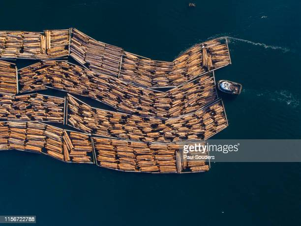 Aerial View of Log Boom, British Columbia, Canada