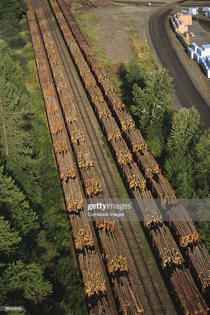 Aerial view of logs on freight train : Stockfoto
