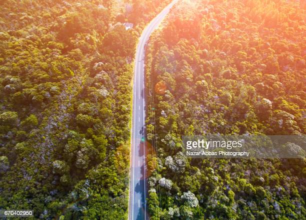 Aerial View Of Long Road Cutting Through Forest.