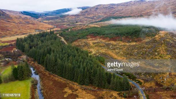 aerial view of low cloud and mist on a scottish hillside in rural dumfries and galloway - johnfscott stock pictures, royalty-free photos & images