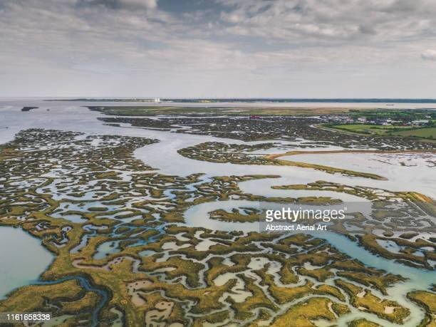 aerial view of low tide and marshland patterns, essex, england, united kingdom - estuary stock pictures, royalty-free photos & images