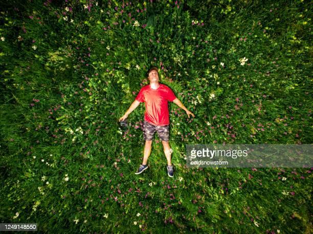 luftaufnahme des mannes, der im blumenfeld liegt - lying down stock-fotos und bilder