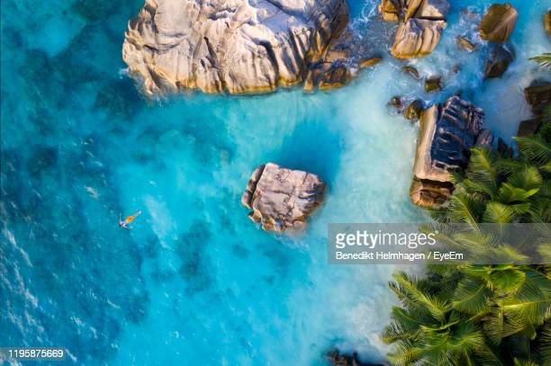 aerial view of man swimming in sea - seychelles photos et images de collection