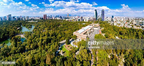 aerial view of mexico city skyline from chapultepec park - メキシコシティ ストックフォトと画像