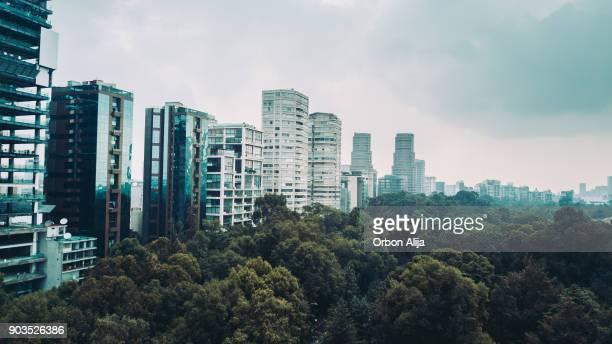 Horizonte de vista de la ciudad de México aérea del parque de Chapultepec