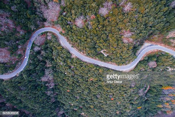 Aerial view of mountain road with beautiful curves between the dense oak forest in the Catalonia region.