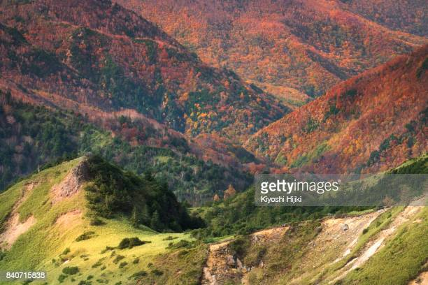 Aerial view of Mt.Shiga-kogen and Shirane in Autumn, Mt.Yokoteyama, Nagano, Japan.
