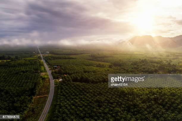 Aerial view of natural view landscape sunrise.
