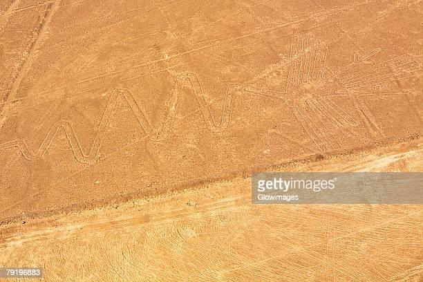Aerial view of Nazca lines representing a gannet, Nazca, Peru