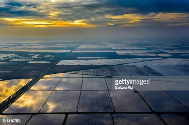 aerial view of northern california flooded rice fields in the evening light - floods and drought stock pictures, royalty-free photos & images