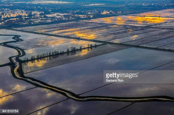 aerial view of northern california flooded rice fields in the evening light - california flood stock photos and pictures