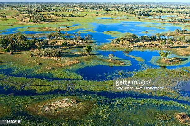aerial view of okavango delta - botswana stock pictures, royalty-free photos & images