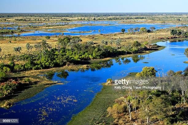 aerial view of okavango delta - okavango delta stock photos and pictures