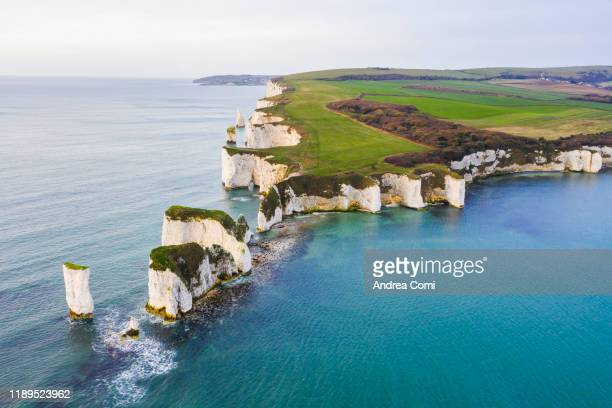 aerial view of old harry rocks, dorset, england - 炭酸石灰 ストックフォトと画像