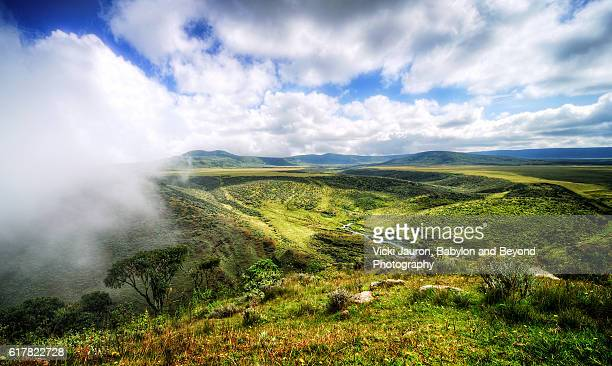 aerial view of olmoti crater in tanzania - volcanic crater stock pictures, royalty-free photos & images