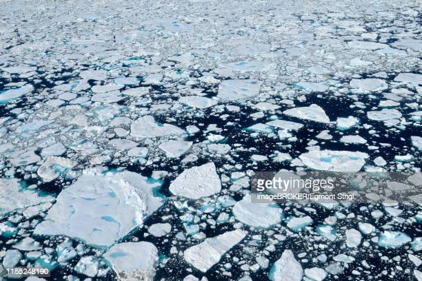 aerial view of pack ice on ammassalik fjord, east greenland, greenland - pack ice stock pictures, royalty-free photos & images